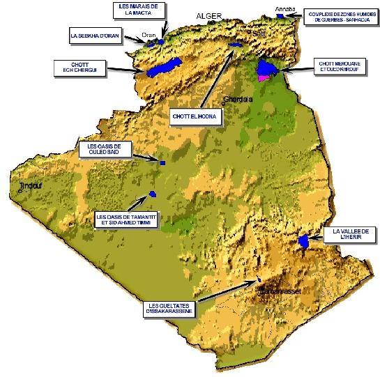 immagini algeria
