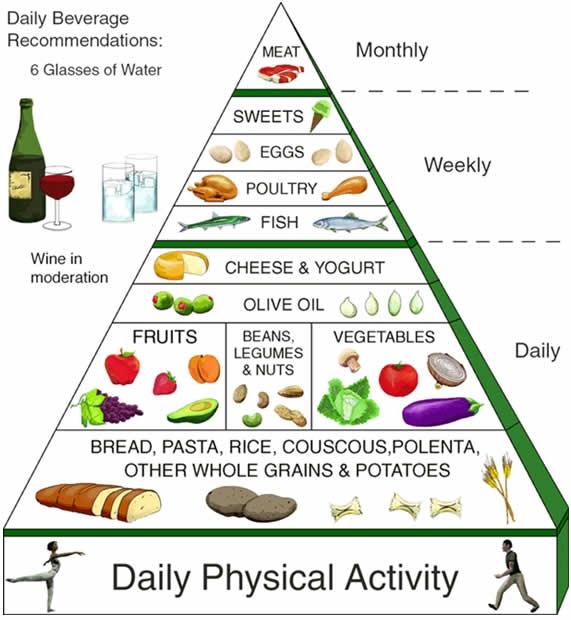 le proteine, gli alimenti proteici, i lipidi o grassi, i carboidrati