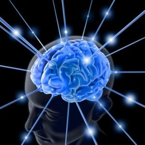 Elementi di Psicologia(5) - LA MEMORIA - I SISTEMI DI MEMORIA
