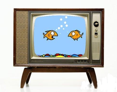 Televisione - Storia, Funzionamento della televisione, La trasmissione televisiva, Ricevitori televisivi, Formazione dei segnali a colori